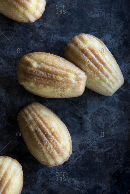 Madeleines scattered on a dark background