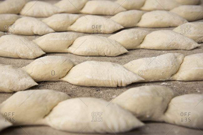 Rows of raw bread loaves on tray