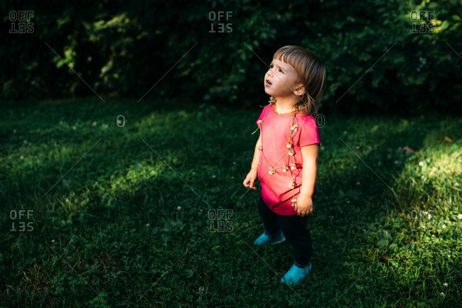 Toddler girl looking up at the sky