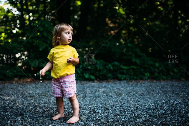 Toddler girl standing on gravel driveway holding flowers
