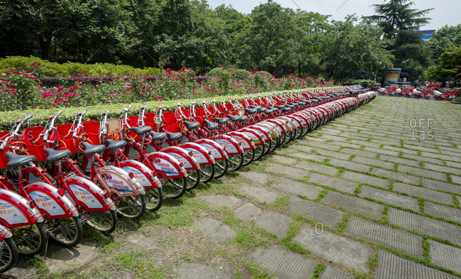 A lot of red public rentable bicycles parked in a neat row