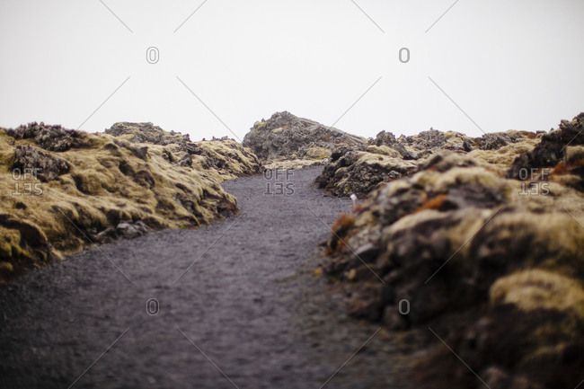 Path through a lava field in Iceland