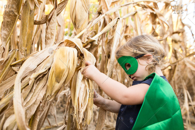 Child dressed as a superhero playing in a cornfield
