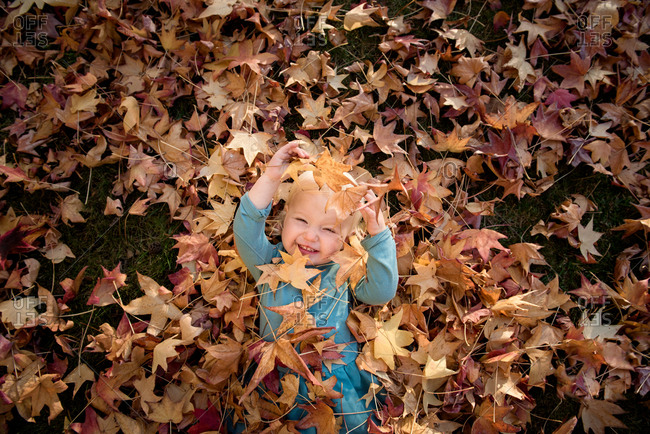 Toddler girl playing in fallen leaves