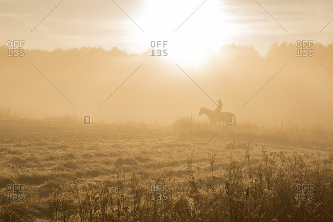 Silhouette of person horseback riding at sunrise