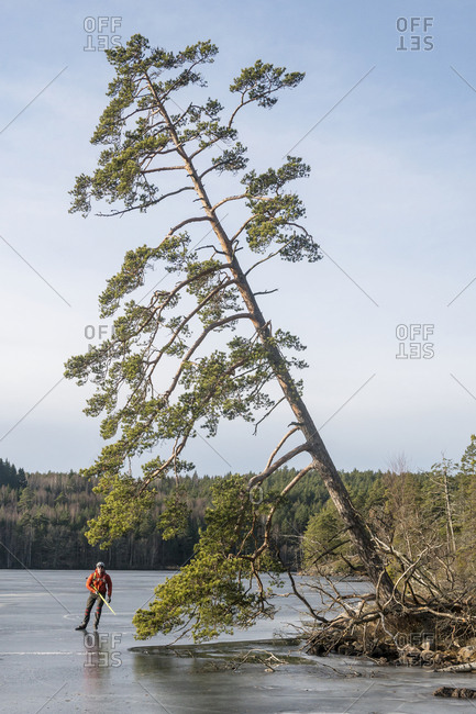 Man ice-skating near a tree