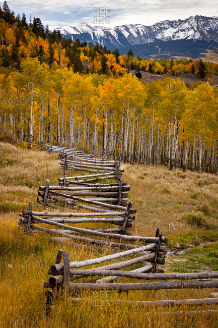 A stacked rail fence in front of the snow capped San Juan Mountains flanked by Aspen forests