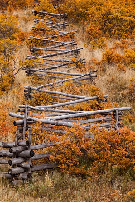 A rail fence among Fall Foliage