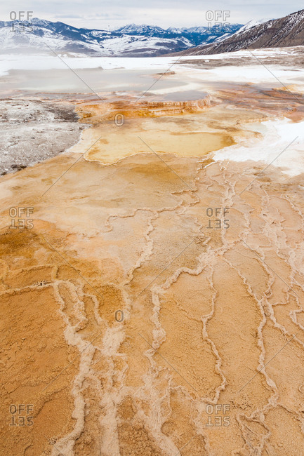 A close view of the patterns in the travertine terraces of Canary Spring of Mammoth Hot Springs