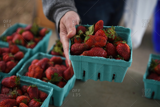 Man purchasing strawberries at farmer's market