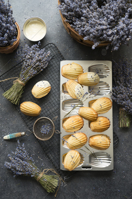 Lavender bunches with madeleine cookies