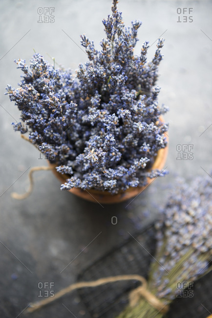 Lavender bunches on gray background
