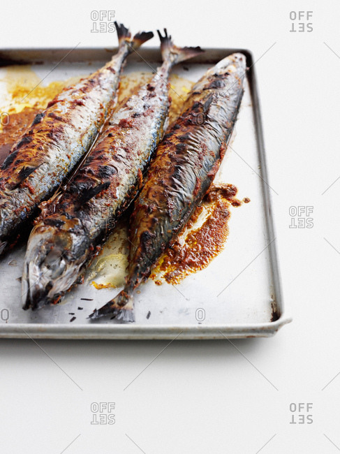 Pan of grilled fish