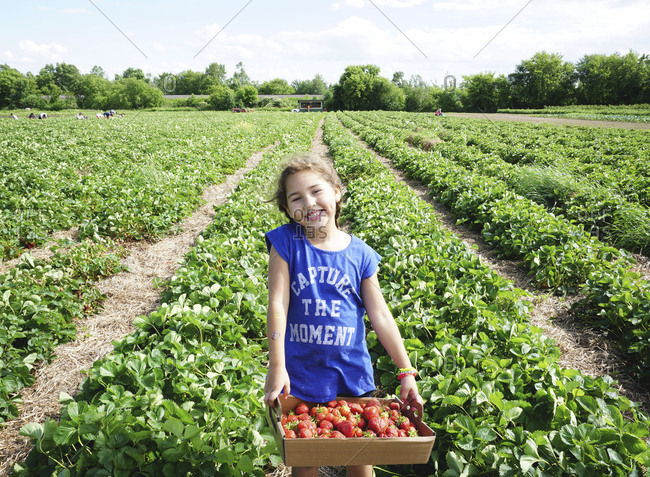 Smiling girl in strawberry field