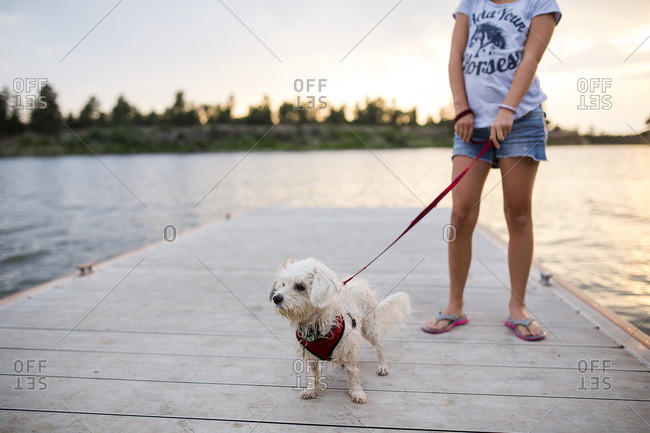 Low angle view of girl with white dog on leash