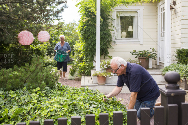 Senior man and woman working in garden