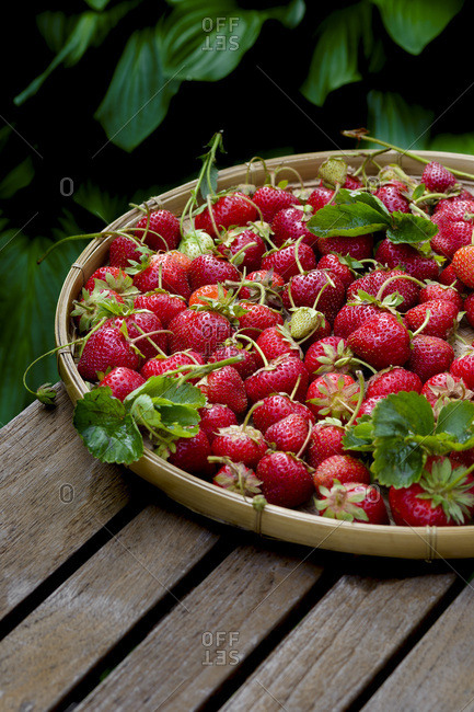 Fresh strawberries in a dish on a picnic table outside
