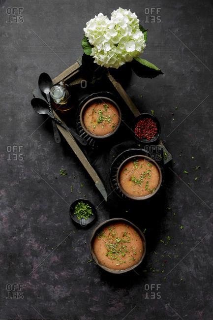 Gazpacho, Cold Tomato Soup