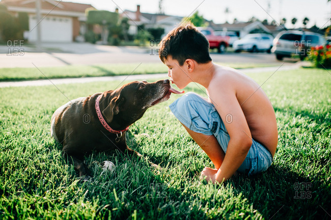 Boy kissing his dog