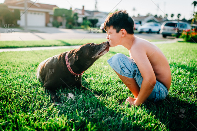 Dog kissing boy's face