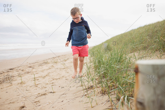 Little boy collecting seashells on a beach