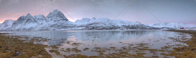 Panorama of pink sky at dawn on snowy fields and wooden hut surrounded by frozen sea, Svensby, Lyngen Alps, Troms, Norway, Scandinavia, Europe