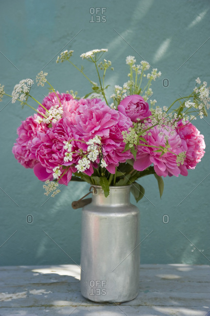 Bunch of pink peonies- yarrows and horseradish flowers