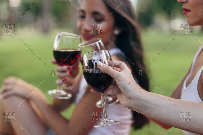Friends in a park clinking red wine glasses
