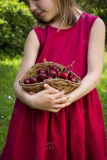 Little girl wearing red summer dress holding basket of cherries- partial view