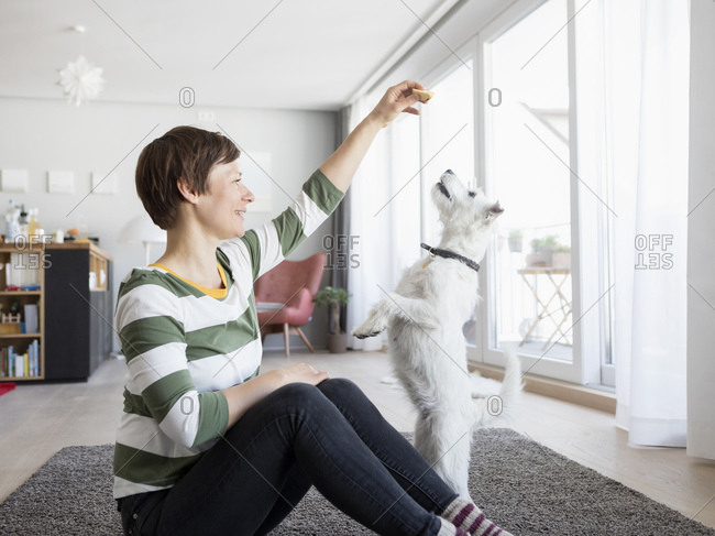 Woman sitting on the floor in the living room with her dog