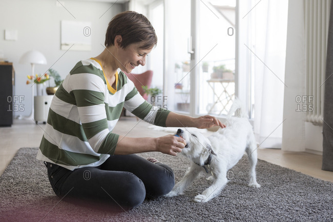 Smiling woman sitting on the floor at home playing with her dog