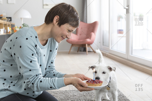 Smiling woman presenting her dog a birthday cake
