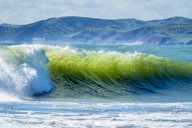 New Zealand- North Island- Raglan- Ngarunui Beach- Manu Bay- breaking wave