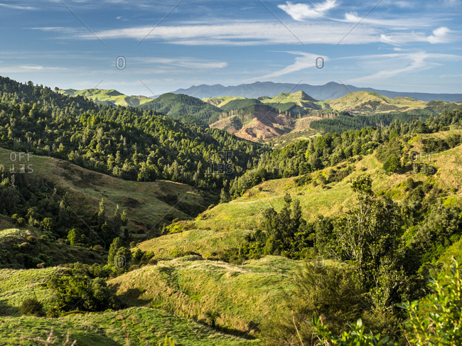New Zealand- North Island- Region Waikato- scenics