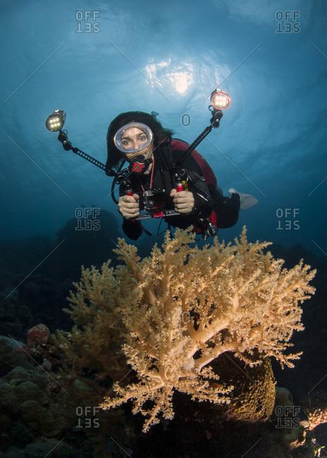 Palau- woman diving