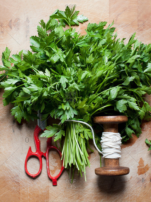 Parsley tied with string, overhead view