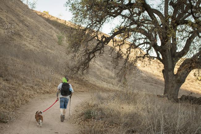 Mature man and his basset hound hiking in Santa Monica Mountains, California, USA