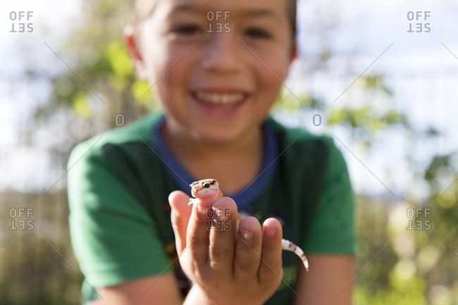Close up portrait of boy holding gecko