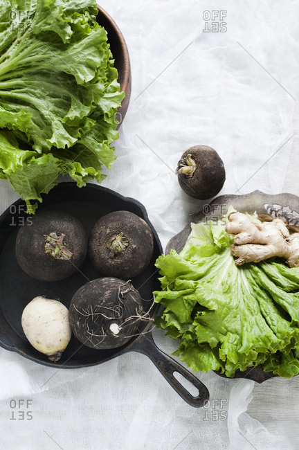 Still life with root ginger, lettuce and black turnip