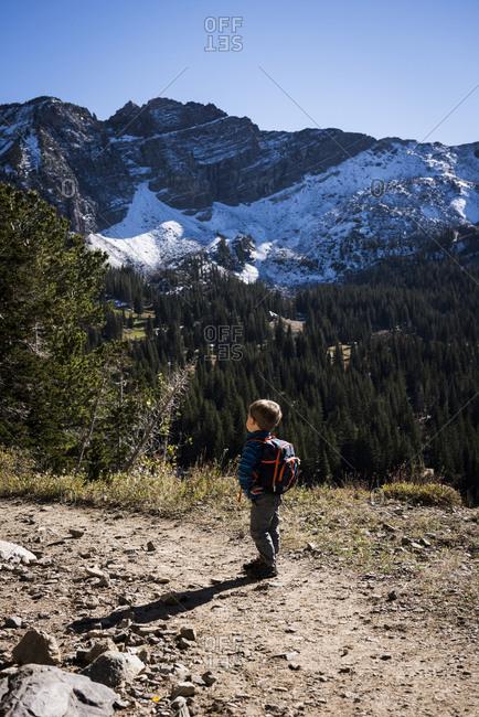 Toddler hiking, Catherine's Pass Trail, Albion Basin, Alta, Utah, USA