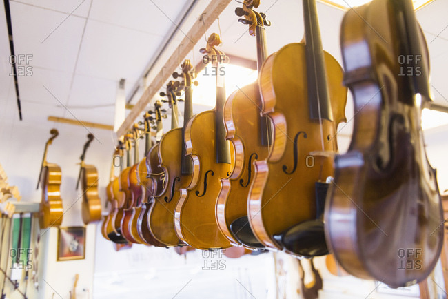 Violins in violin maker's production studio