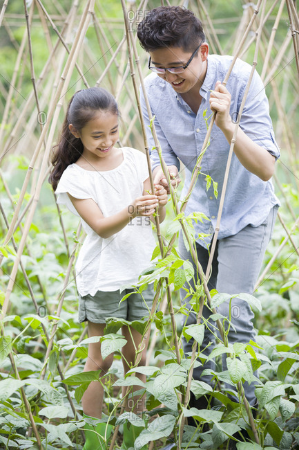 Young father and daughter gardening together