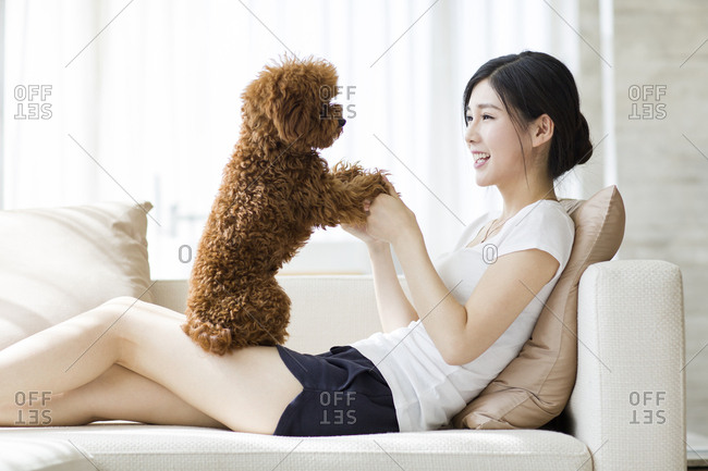 Young woman playing with a pet poodle at home
