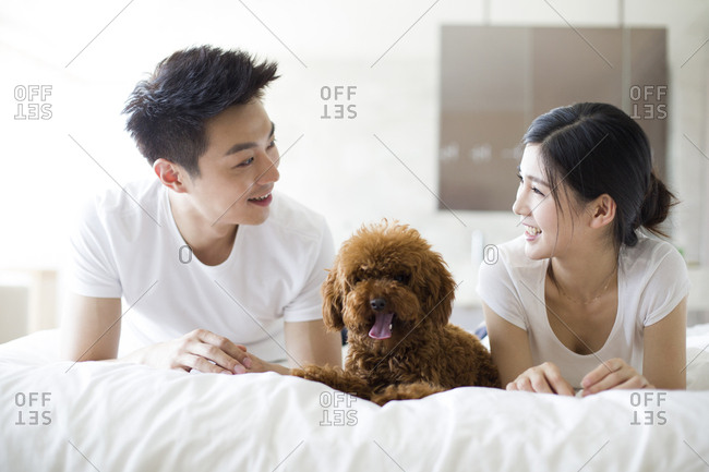 Young couple playing with a pet poodle at home