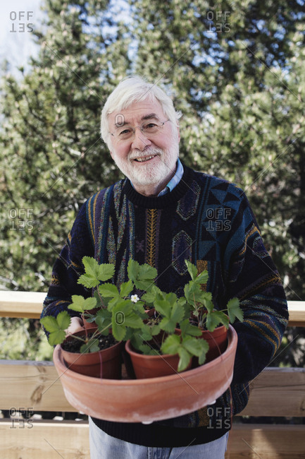 Portrait of smiling senior man holding tray with potted plants at yard