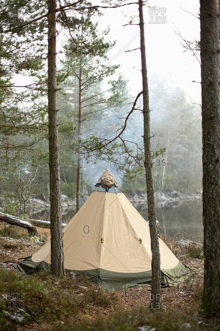 Tent in woodland by lake