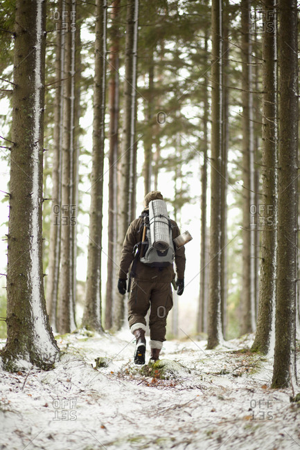 Rear view of male hiker walking amidst tree trunks in forest during winter