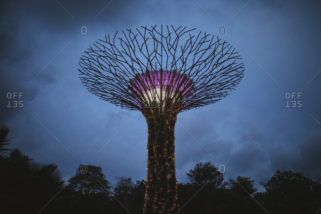 2/17/17: The futuristic Supertree Grove at Gardens by the Bay in Singapore.