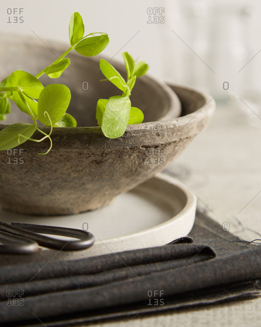 Rustic gray pottery bowls with greens