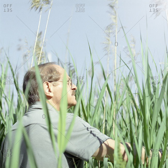 Senior man walking through tall grass